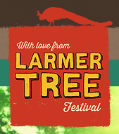 2013 Larmer Tree festival 17th -21st August